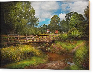 Country - Country Living Wood Print by Mike Savad