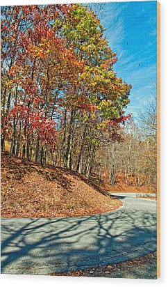 Country Curves And Vultures Wood Print by Steve Harrington
