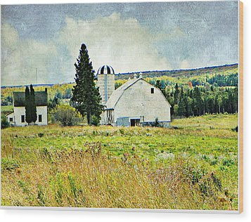 Country Farm Wood Print by Dianne  Lacourciere