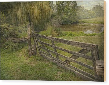 Country - Gate - Rural Simplicity  Wood Print by Mike Savad