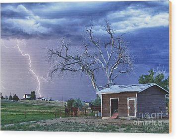 Country Horses Lightning Storm Ne Boulder County Co Hdr Wood Print by James BO  Insogna