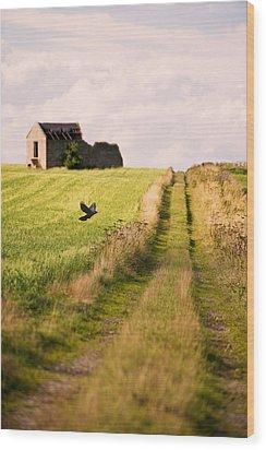 Country Lane Wood Print by Amanda Elwell