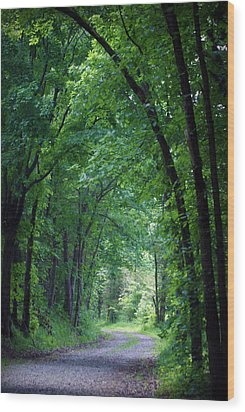 Country Lane Wood Print by Cricket Hackmann