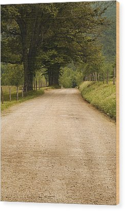 Country Lane - Smoky Mountains Wood Print by Andrew Soundarajan