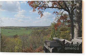 Country Life All Profits Go To Hospice Of The Calumet Area Wood Print