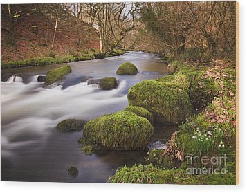 Country River Scene Wales Wood Print by Pearl Bucknall