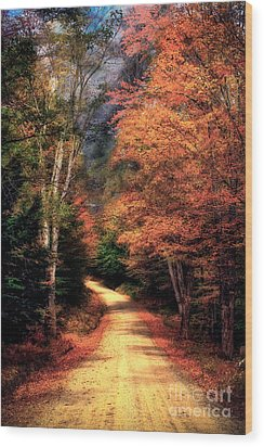 Country Road Wood Print by Brenda Giasson