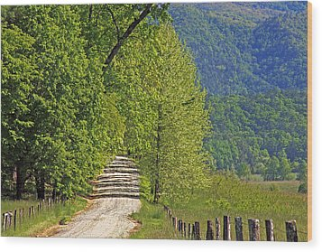 Wood Print featuring the photograph Country Road by Geraldine DeBoer