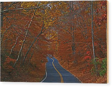 Wood Print featuring the photograph Country Road by Andy Lawless