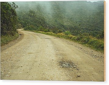 Country Road In Colombia Wood Print by Jess Kraft