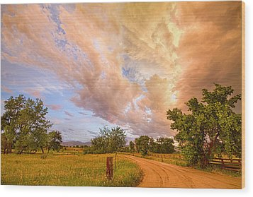 Country Road Into The Storm Front Wood Print by James BO  Insogna