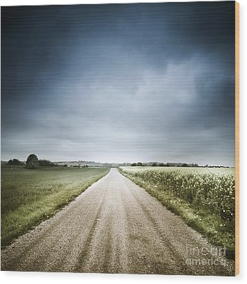 Country Road Through Fields, Denmark Wood Print by Evgeny Kuklev