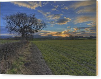 Country Sunrise Wood Print by Ian Mitchell