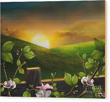 Countryside Sunset Wood Print by Peter Awax