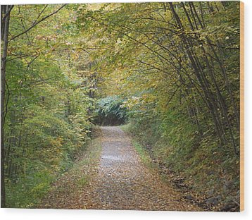 County Path Wood Print by Catherine Gagne