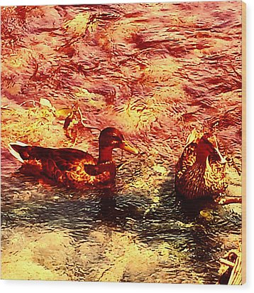 Couple Of Ducks Wood Print