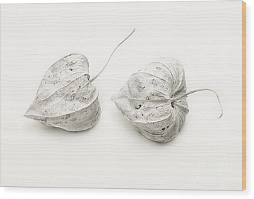 Couple Physalis Wood Print by Sviatlana Kandybovich