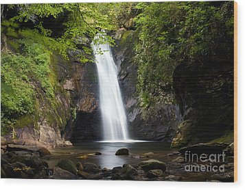 Courthouse Falls I 2010 Wood Print