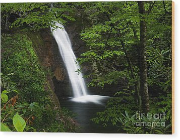 Courthouse Falls II 2010 Wood Print