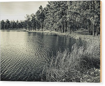Wood Print featuring the photograph Cove by Greg Jackson