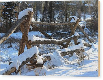 Covered In Snow Wood Print by Fiona Kennard
