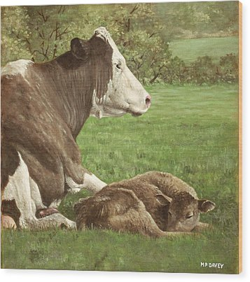 Cow And Calf In Field Wood Print by Martin Davey