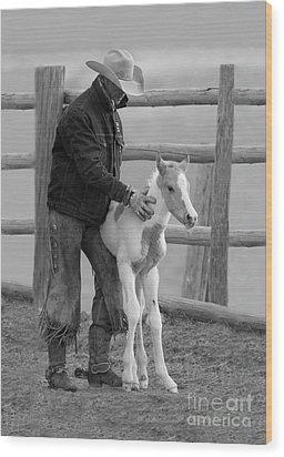Cowboy Steadies Foal Wood Print by Carol Walker