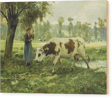 Cows At Pasture  Wood Print by Julien Dupre