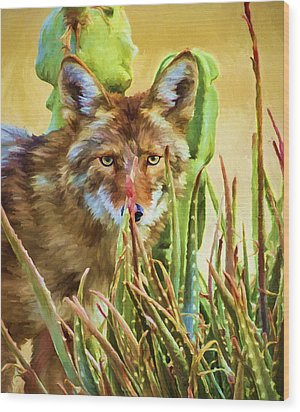 Coyote In The Aloe Wood Print