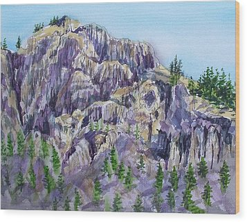 Coyote Mountain Wood Print by Lynne Haines
