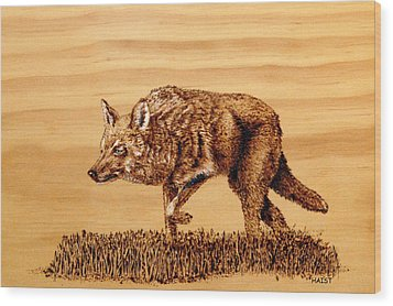 Coyote Wood Print by Ron Haist