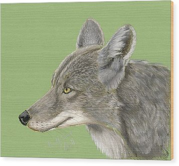 Coyote Wood Print by Ruth Seal