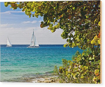 Wood Print featuring the photograph Cozumel Sailboats by Mitchell R Grosky