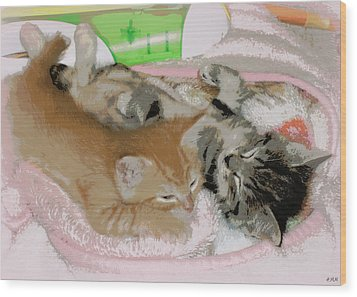 Cozy Kittens Wood Print by Heidi Manly