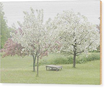 Crab Apple Blossoms Wood Print by Susan Crossman Buscho