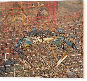 Crab Got Away Wood Print