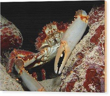 Crab Pose Wood Print by Nina Banks