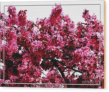 Crabapple Tree Blossoms Wood Print by Rose Santuci-Sofranko