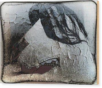 Cracked Dreams Wood Print by Gun Legler
