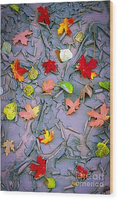 Cracked Mud And Leaves Wood Print by Inge Johnsson