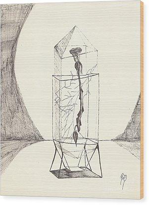 Cracked... Sketch Wood Print by Robert Meszaros