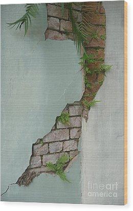 Cracked Wood Print by Valerie Reeves