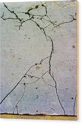 Cracks In The Edifice Wood Print
