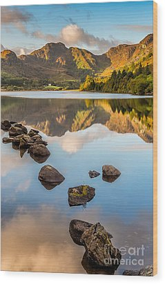 Crafnant Rocks Wood Print by Adrian Evans