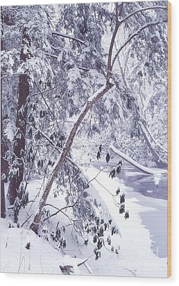 Cranberry River Deep Snow Wood Print by Thomas R Fletcher