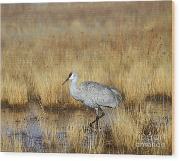 Wood Print featuring the photograph  Solitary Crane In The Field by Ruth Jolly