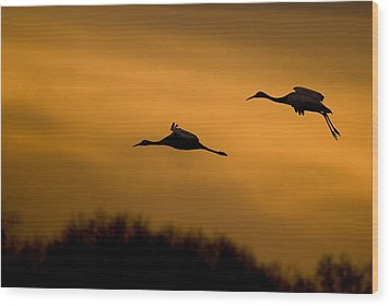 Cranes At Sunset Wood Print