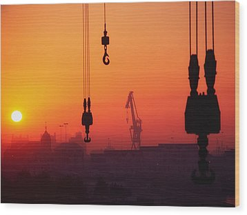Cranes At Sunset Wood Print by The Irish Image Collection