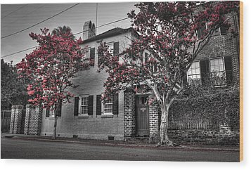 Crape Myrtles In Historic Downtown Charleston 1 Wood Print