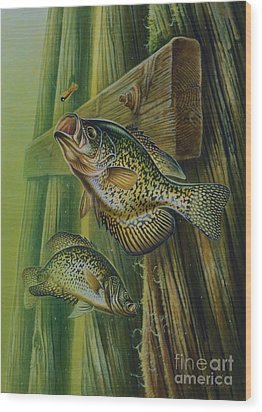 Crappie And Bridge Support Wood Print by Jon Q Wright